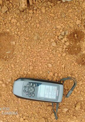 Fresh lion spoors found in Ngoume