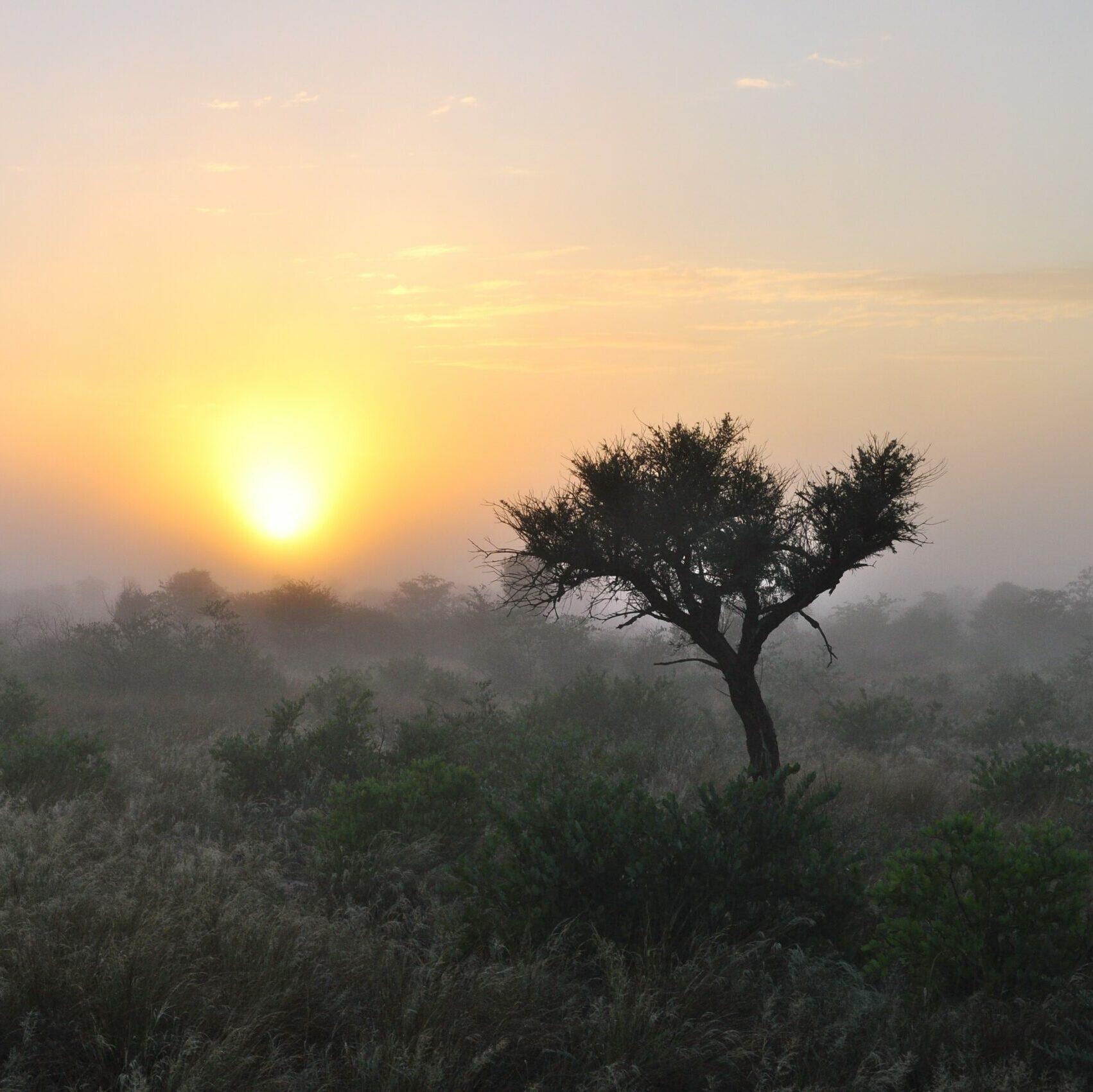 Sunrise over the Central Kalahari Game Reserve in Botswana