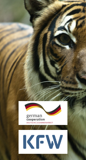German Cooperation and KfW