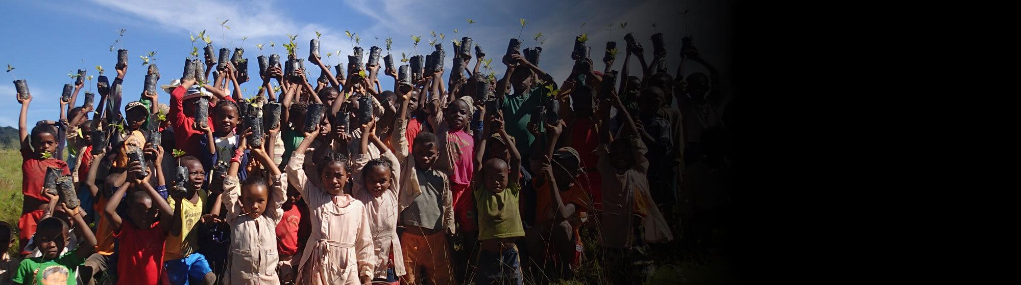 A school planting trees in Madagascar