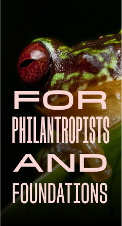Why partner with IUCN For Philanthropists and foundations 1