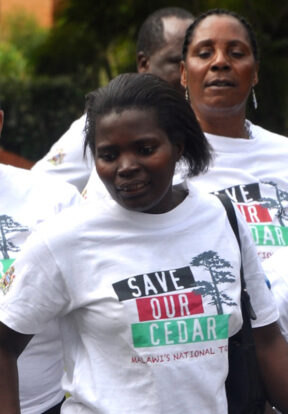Group of women wearing Save Our Cedar t-shirts