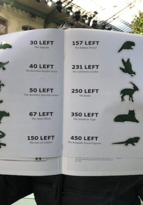 A fashionista learns about threatened species at Lacoste's Paris Fashion Show 2018
