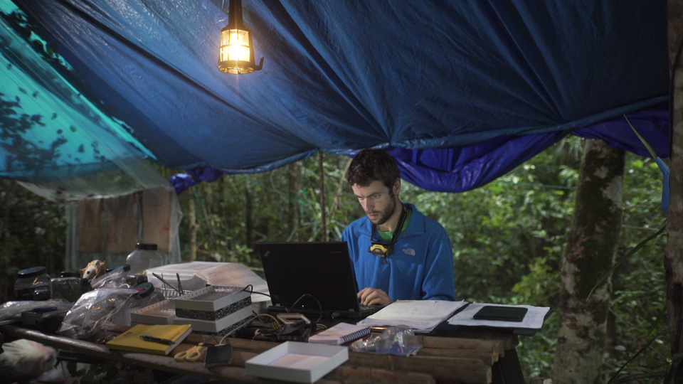 Working in camp