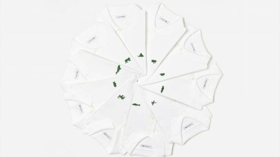 Lacoste Species Wheel