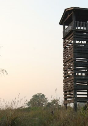Watch tower in Bardia NP