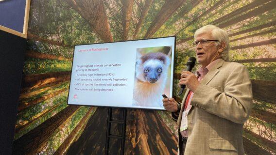 Dr Mittermeier at IUCN World Conservation Congress in Marseille